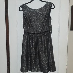Brand New Aqua Shift Dress Size 6